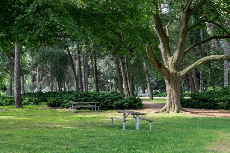 Benches in Gage Park